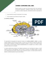 Funciones comunes del SNC.docx