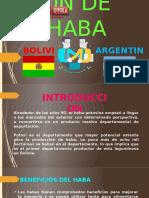 EXPORTACIÓN DE HABA.pptx