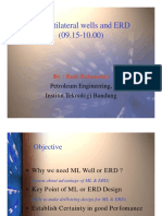Multilateral wells and ERD.pdf
