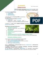 Asszimilacio-bioszfera