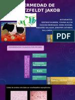 BIOQUIMICA-SEMINARIO 1.pptx