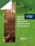 BioenergyReport February 20 2015