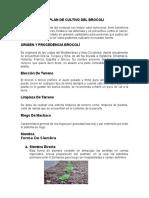 Plan de Cultivo de Brocoli Trabajo(Delyns Santos Trinidad)