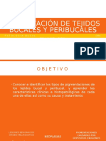 Pigmentación-de-tejidos-bucales-y-peribucales-4.pptx