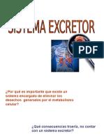 El Aparato Excretor
