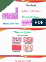 Epitelios y Glándulas (Histología)