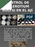Control de Sclerotium Rolfsii en El Aji