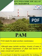 PAM Presentation