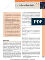 biologia de la matrix extracelular.pdf
