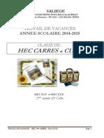 Travail Ete Hec Carres 2014 (1)