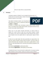 Relatório Física - Lucimara