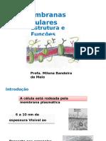 158524723 Aula 7 Membrana Celular Estrutura e Funcao