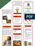 fencyt -2016.pdf
