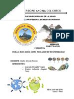ACUERDOS INTERNACIONALES SOBRE EL MEDIO AMBIENTE - copia.docx