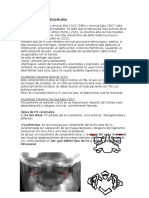 Cervical.docx