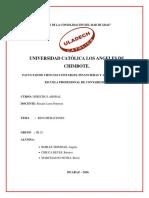 TAREA de I. .F IIU Monográfico Renumeraciones Grupal