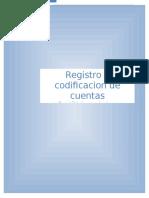 Registro y Codificacion de Cuentas