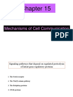 Chapter 15 - Mechanisms of Cell Communication - 111612