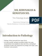 TM 1 PATOLOGI Adaptasi,Radang,Healing,Infeksi