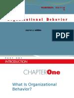 Diversity in Organiation