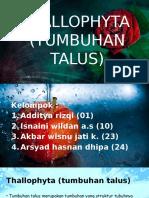thallophyta-131130182159-phpapp01