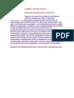 Biotransformaciones y Accion Toxica