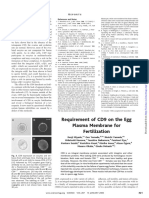 Requirement of CD9 on the Egg Plasma Membrane for Fertilization.