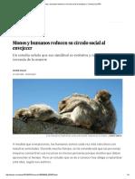 Monos y Humanos Reducen Su Círculo Social Al Envejecer _ Ciencia _ EL PAÍS