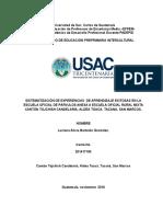 Sistematización Luciana 2016