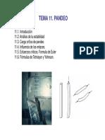 ERMAT-Tema 11 PANDEO.pdf