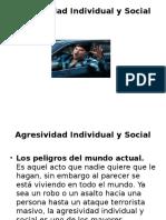 Agresividad Individual y Social