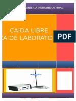 CAIDA LIBRE.docx