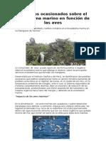 Impactos Ocasionados Sobre El Ecosistema Marino en Función de Las Aves