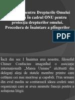 Depunerea plingerii individuale CDO în cadrul ONU.pptx