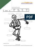 Skeleton Activity