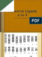 20100813_herencialigadax.pptx
