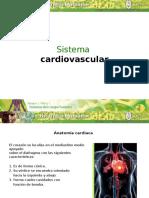 Sistema Cardiovascular BH