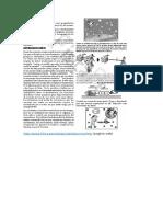 Ejercicios de Poleas y Dinamica