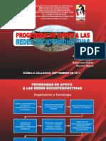180795627-Programas-de-Apoyo-a-Redes-Socioproductivas-Marian-Soto.ppt