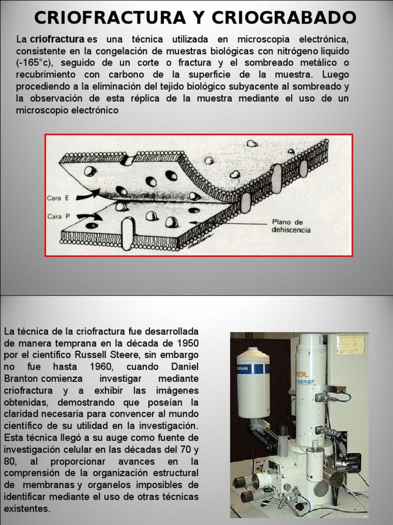 biología general los sistemas vivientes pdf gratis