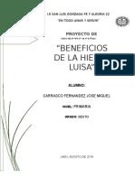 Proyecto de Investigación Hierba Luisa