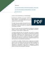 Conclusion Desarrollo Sostenible