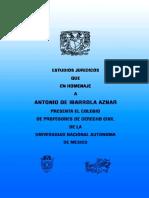 Temas De Derecho Civil UNAM