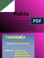 rabia.pptx