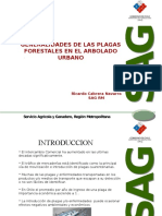 Generalidades Plagas Forestales