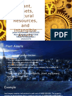 Plant, Assets, Natural Resources and Intangible Assets