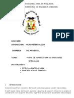 micrometeorologia-informe