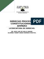 DERECHO PROCESAL CONSTITUCIONAL Y AMPARO UNIDADES..docx
