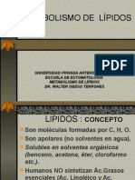 Metabol. de Lípidos Dig, Abs,Transporte Lìpidos Esto Ok!! .