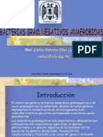 Bacterias Gramnegativas Anaerobias